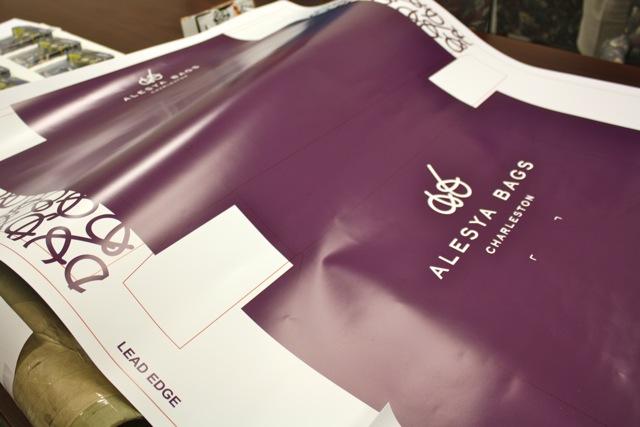 Pratt Industries Alesya Bags Box